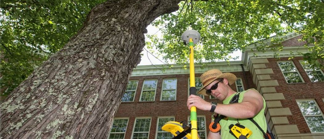 Arborist Consultations-Hillsborough County FL Tree Trimming and Stump Grinding Services-We Offer Tree Trimming Services, Tree Removal, Tree Pruning, Tree Cutting, Residential and Commercial Tree Trimming Services, Storm Damage, Emergency Tree Removal, Land Clearing, Tree Companies, Tree Care Service, Stump Grinding, and we're the Best Tree Trimming Company Near You Guaranteed!