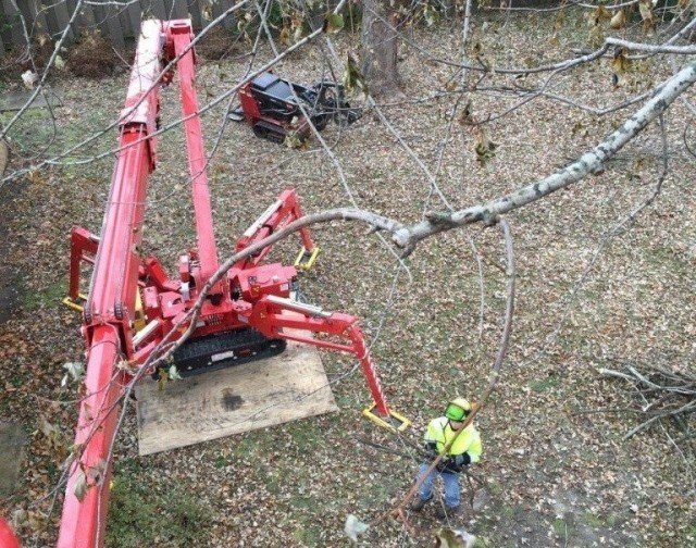 Riverview-Hillsborough County FL Tree Trimming and Stump Grinding Services-We Offer Tree Trimming Services, Tree Removal, Tree Pruning, Tree Cutting, Residential and Commercial Tree Trimming Services, Storm Damage, Emergency Tree Removal, Land Clearing, Tree Companies, Tree Care Service, Stump Grinding, and we're the Best Tree Trimming Company Near You Guaranteed!