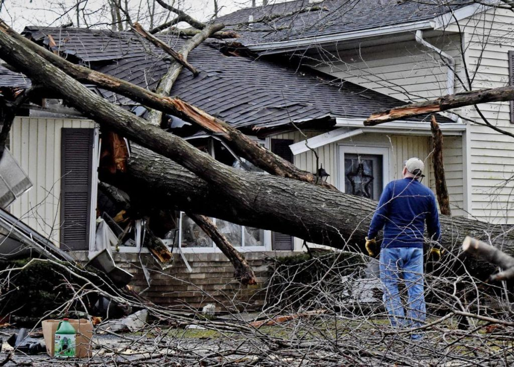 Storm Damage-Hillsborough County FL Tree Trimming and Stump Grinding Services-We Offer Tree Trimming Services, Tree Removal, Tree Pruning, Tree Cutting, Residential and Commercial Tree Trimming Services, Storm Damage, Emergency Tree Removal, Land Clearing, Tree Companies, Tree Care Service, Stump Grinding, and we're the Best Tree Trimming Company Near You Guaranteed!